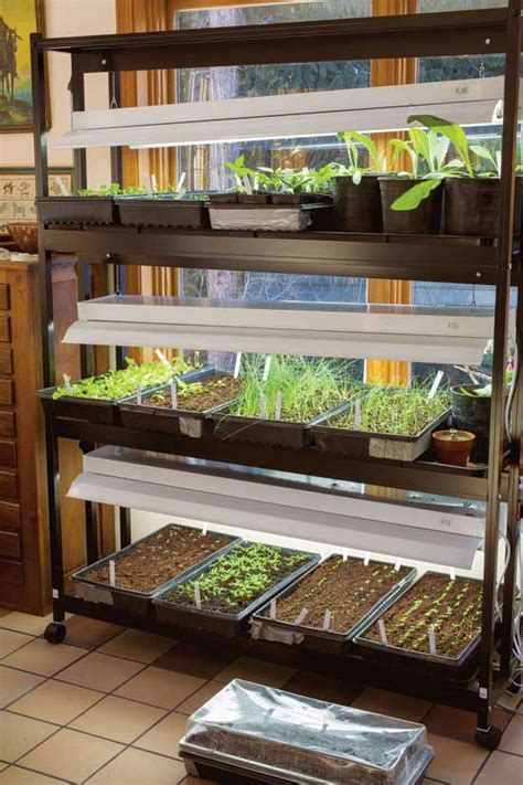 grow lights  starting seeds indoors mother earth