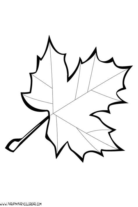 dibujos para colorear de hojas de arboles 029