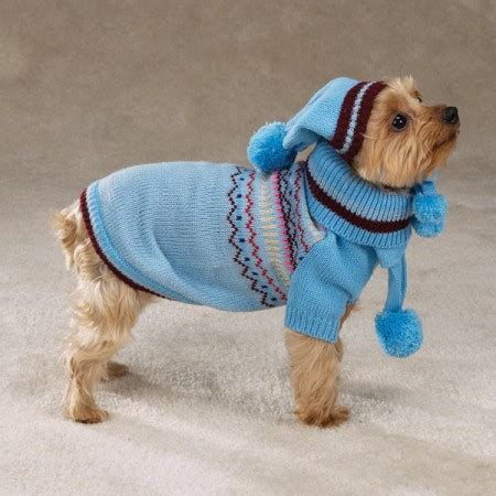 crochet patterns for dog sweaters easy small easy crochet dog sweater patterns crochet dog
