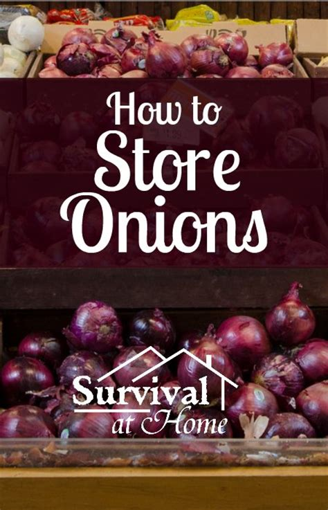How To Store Onions From The Garden by Homesteading Gardening Survivalblogs Org