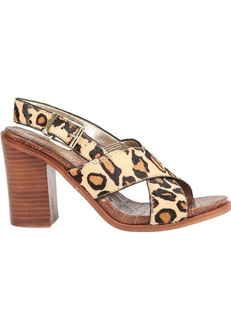 sam edelman leopard sandals lyst sam edelman leopard print sandals
