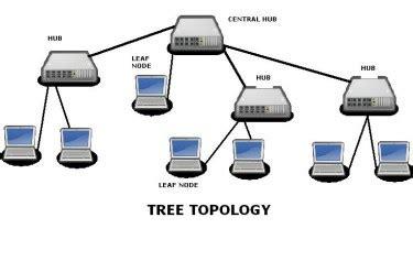tree topology diagram best coaching for bank po bank clerk sbi clerk sbi po ssc