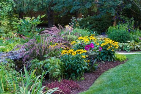garden resources and trends fall blooming perennials dividing perennials hgtv