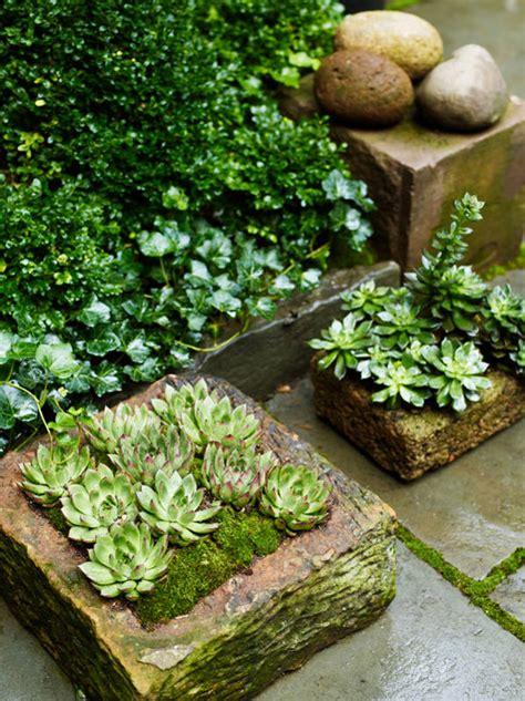 envy winter garden green with envy desire to inspire desiretoinspire net