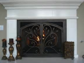 fireplace doors ams fireplace doors remodel ideas traditional living