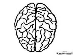 brain coloring page brain top view coloring page