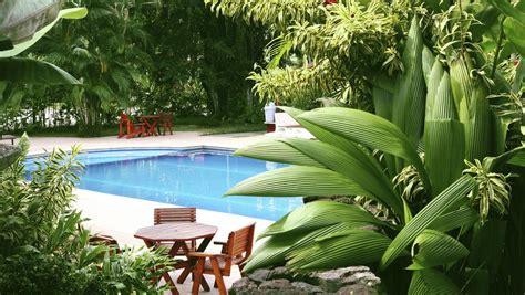 create  tropical garden   dont
