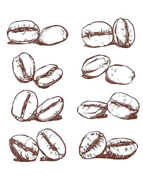 coffee bean tattoo coffee bean vector sketch of coffee beans
