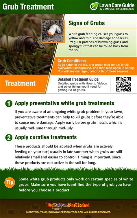 how to get rid of grubs in lawn grub control treatment
