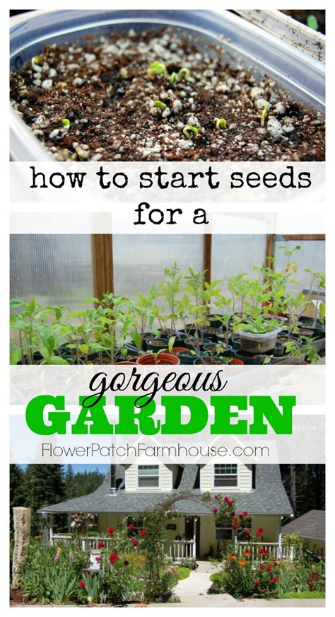 How To Start A Flower Garden How To Start A Flower Garden How To Start A Flower Garden 9 Steps With Pictures Wikihow How
