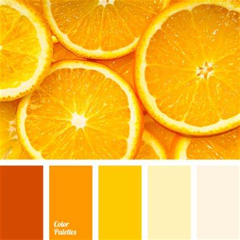 shades of bright orange bright shades of orange color palette ideas