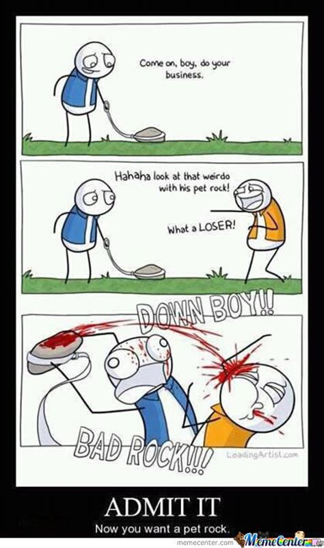 Pet Rock Meme - pet rock by valka meme center