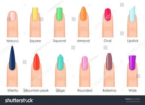 nails shape icons set types fashion stock vector