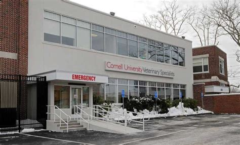 24 hour hospital stamford s 24 hour veterinary hospital opens in south end stamfordadvocate