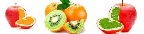 definicion de alimentos transgenicos clases de alimentos alimentos transgenicos alimentos