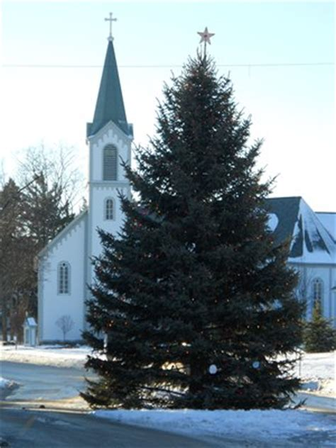 christmas trees in northern mi visit boyne city michigan tree lighting and parade in petoskey and harbor