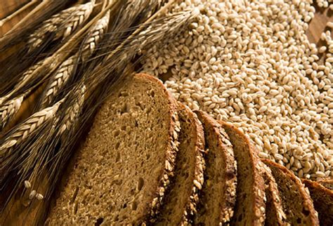 whole grains rich in protein energy foods slideshow foods that give your an