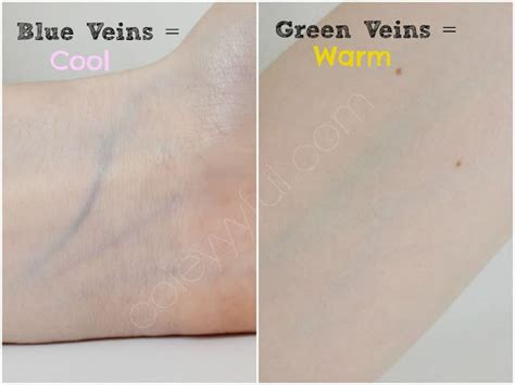 cool tone veins understanding skin tones undertones cool warm neutral soft