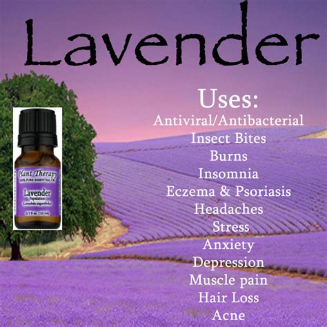 image gallery lavender uses