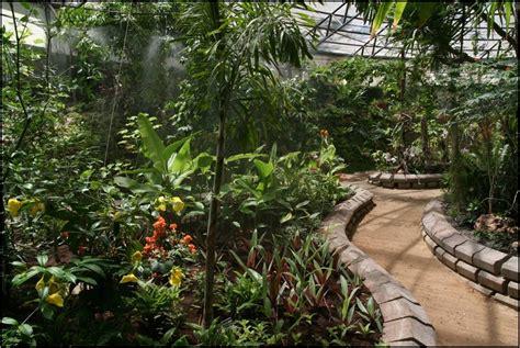 Tropical Conservatory הגן הבוטני Botanical Garden Internship