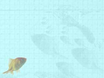 Fish 13 Powerpoint Templates Fish Powerpoint Template