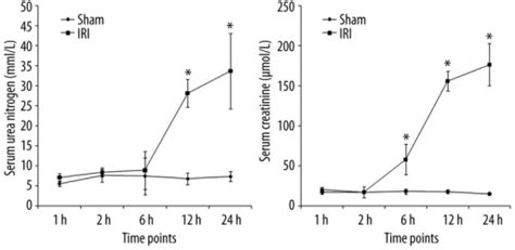 Serum F3 serum urea nitrogen and creatinine levels in rats with