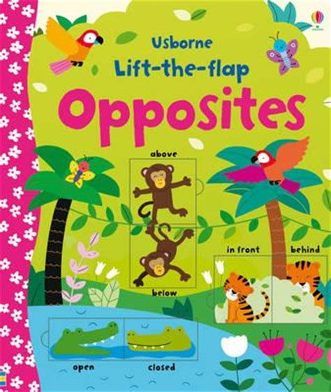 a new year lift the flap book lift the flap opposites felicity m 233 lisande