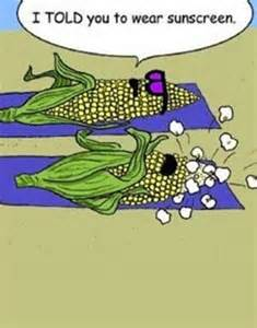 Funny Cartoon Jokes