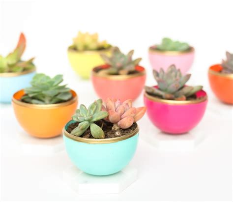 Mini Planters by A Kailo Chic Craft It Diy Mini Succulent