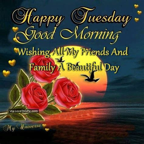 imagenes de good morning tuesday happy tuesday good morning pictures photos and images