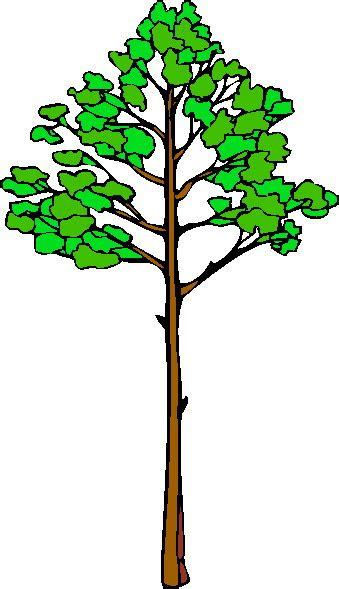 clipart alberi trees clip