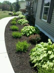 landscaping bushes mulch and bushes like this i d do hosta grass hosta
