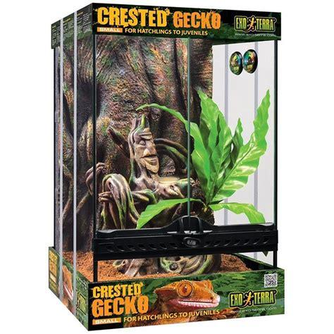 wholesale exo terra crested gecko habitat kit