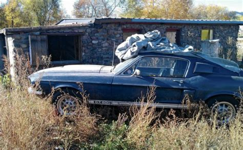 Found Find 1967 Ford Shelby Mustang Gt500 Barn Find