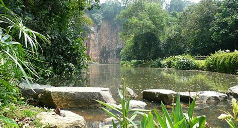 Home Design Credit Card What To See At Bukit Batok Nature Park