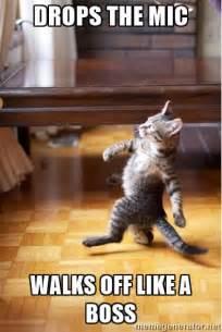 Drop Mic Meme - drops the mic walks off like a boss walking cat meme