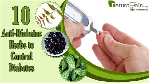 Diskon Teh Herbal Diabetes Diabetea Insuline 10 anti diabetic herbs to diabetes or high blood