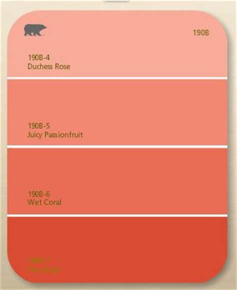 behr coral colors color combos