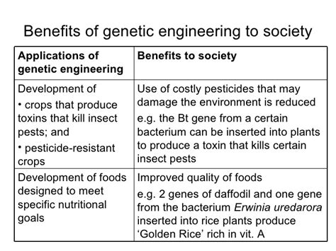 Genetic Engineering Essays by Essays On Genetic Engineering Genetic Engineering Should Be Banned A Level Science Marked By