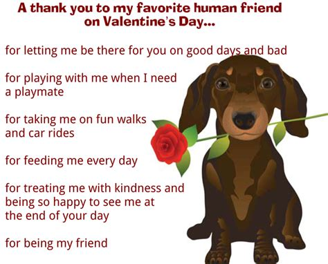 pet valentines quote about dogs desatnik certified trainer