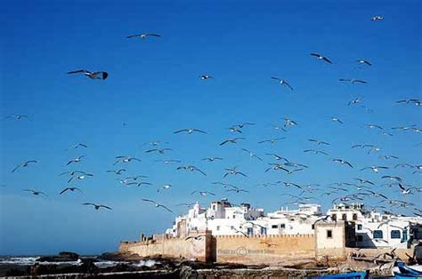 viaggio in marocco un weekend di relax seconda parte
