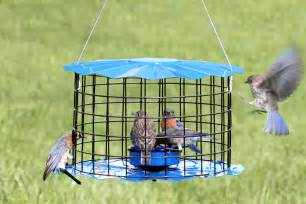 caged bird feeders for small birds bird cages