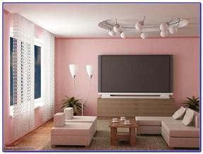 color combinations for living room walls best colour combination for living room in india