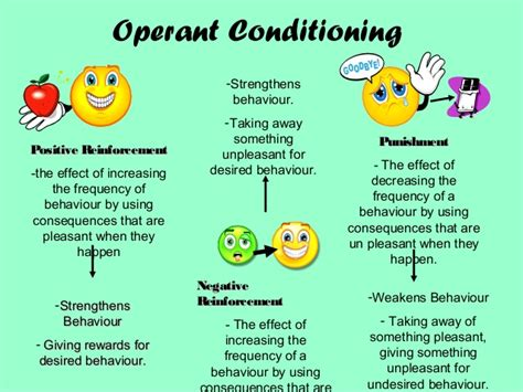 operant conditioning and reinforcement psychology a level