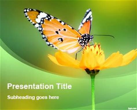 butterfly themes for powerpoint 2010 free single flower powerpoint template