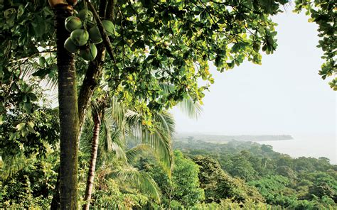 costa rica costa rica travel guide vacation trip ideas travel