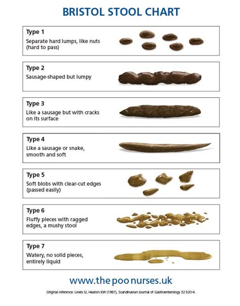 Bristol Stool Chart For by Childhood Constipation And Soiling