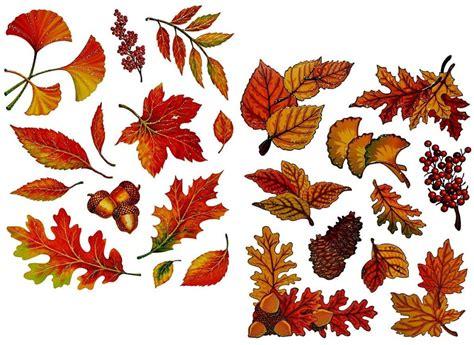 Herbstdeko Fensterbilder by Herbstanfang Wann Ist Herbst Wann Ist Herbstanfang 2018