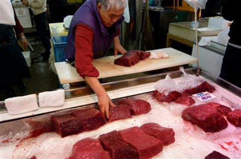 Whaling Is Still Big In Japan by Responsible Tourism In Japan