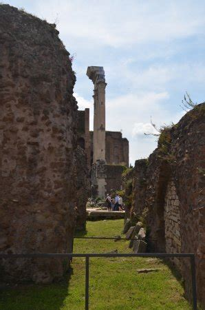 divo giulio tempio divo giulio rome tripadvisor